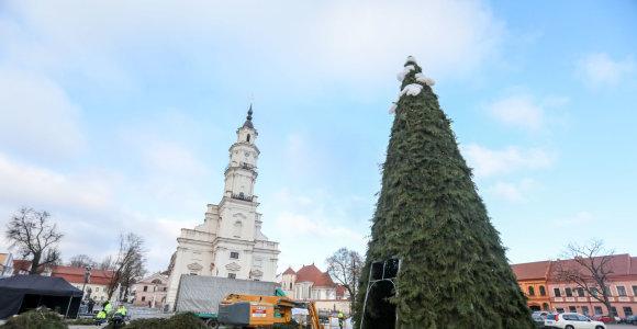 Pristatyta Kauno Kalėdų eglės idėja: puošia iš medžiagų, kurios kitąmet Lietuvoje bus uždraustos