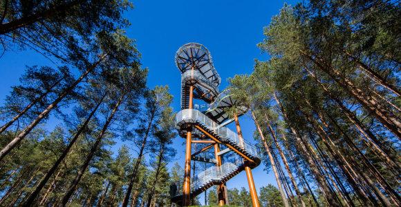 10 įspūdingiausių apžvalgos bokštų vasaros kelionėms Lietuvoje