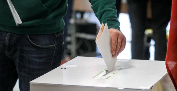 Politologo prognozė 2020-ųjų Seimo rinkimams: palankios sąlygos konservatoriams