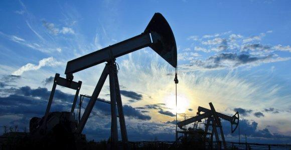 Naftos kainos po pirmojo per šešias dienas pakilimo vėl pasuko žemyn