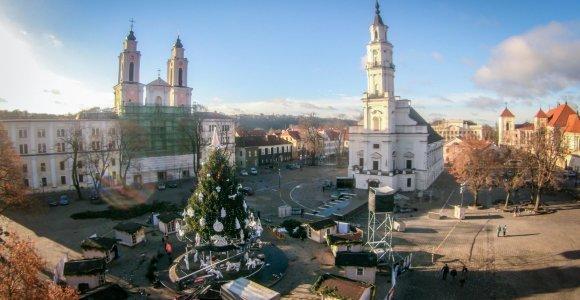 Kaunas jau pradėjo rūpintis Kalėdų egle: konkursu domisi tiek Vilniaus, tiek ir Kauno menininkai