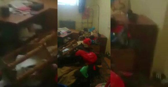 Policija skelbia apie sėkmingą kratą Marijampolės PN, kaliniai demonstruoja nusiaubtas patalpas