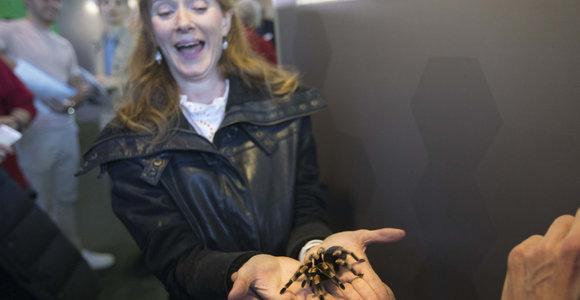 Bijote vorų? Londone rastas būdas, kaip įveikti šią baimę
