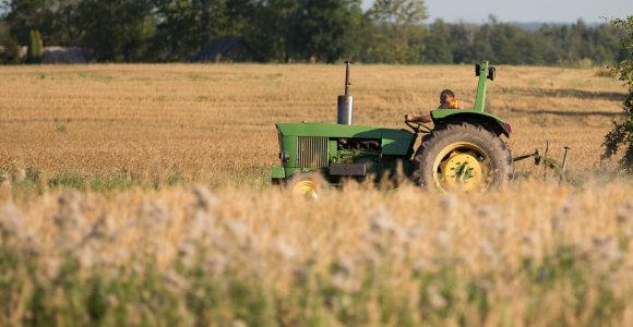 Beveik visą žemę kaime savininkams žadama grąžinti šiemet