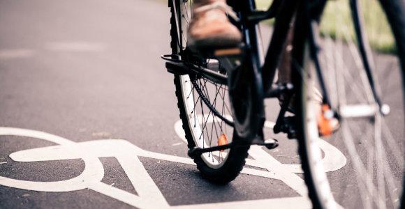 """""""Baltik vairo"""" vadovas: augsime per elektrinių dviračių gamybą"""