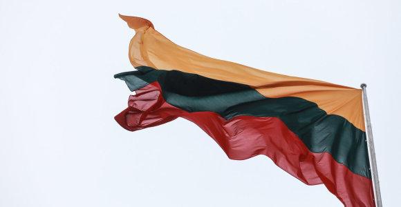 Seimas įteisino galimybę užsieniečiams gauti e. rezidento statusą