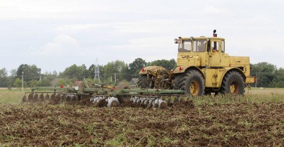 Žemės ūkio produktų supirkimo kainos per metus padidėjo 15,8 proc.