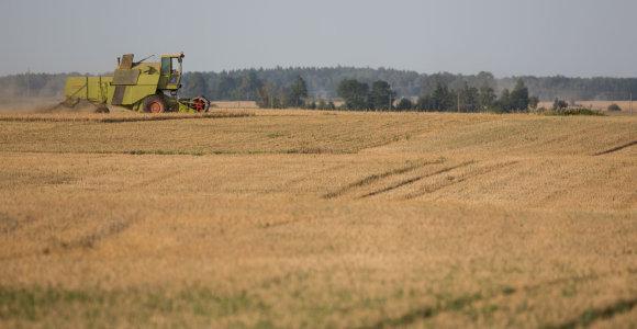 Dėl situacijos žemės ūkyje tyrimo Seimas spręs ketvirtadienį