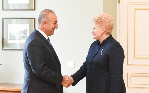 R.Dačkaus nuotr./Prezidentė susitikimas su Turkijos užsienio reikalų ministru Mevlüt Çavuşoğlu