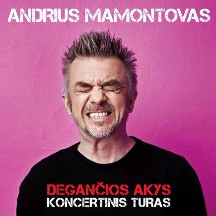 Koncertinio turo plakatas/Andrius Mamontovas