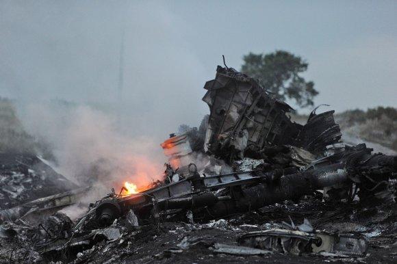 """""""Scanpix""""/""""Anadolu Ajansi"""" nuotr./Numušto """"Malaysia Airlines"""" lėktuvo nuolaužos Donecke, Ukrainoje."""
