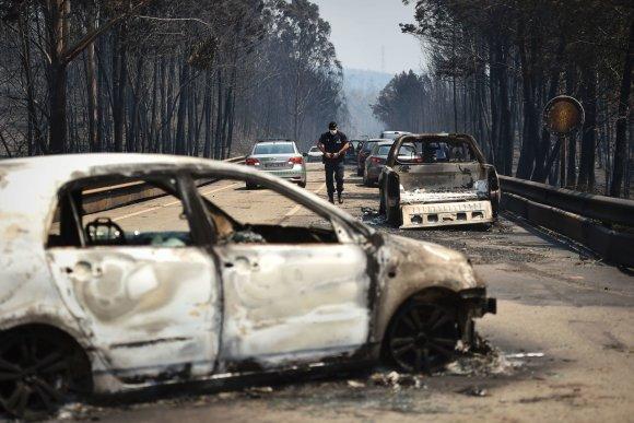 "AFP/""Scanpix"" nuotr./Miško gaisras Portugalijoje"