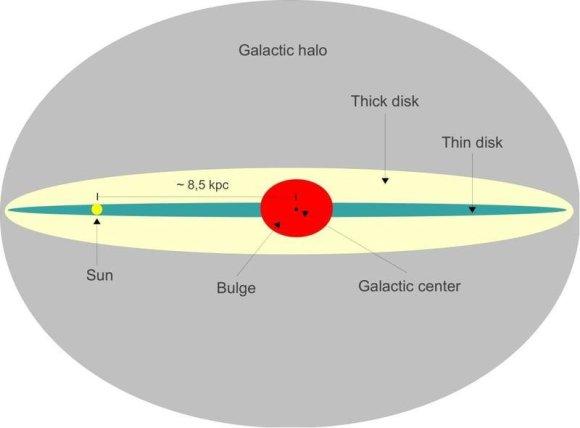 Wikimedia commons iliustr./Paukščių Tako galaktikos storasis ir plonasis diskai