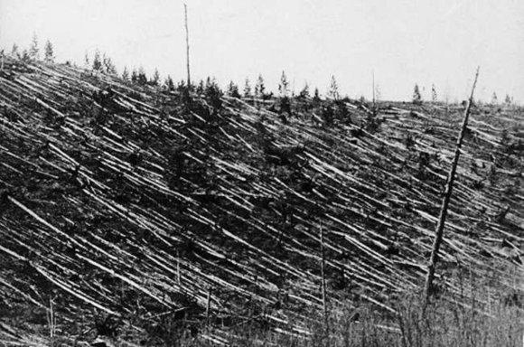 Bendras taigos išvartų plotas viršija 2000 km² – medžiai, sugulę tarsi šiaudų stiebeliai, buvo parblokšti didžiulės jėgos./ Iliustracijos šaltinis: Lietuvos etnokosmologijos muziejus.