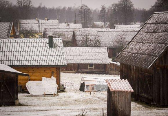 Irmanto Gelūno / 15min nuotr./Kelionė per Aukštaitijos nacionalinio parko miškus ir pievas.