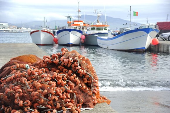 123rf.com nuotr./Azorų salos