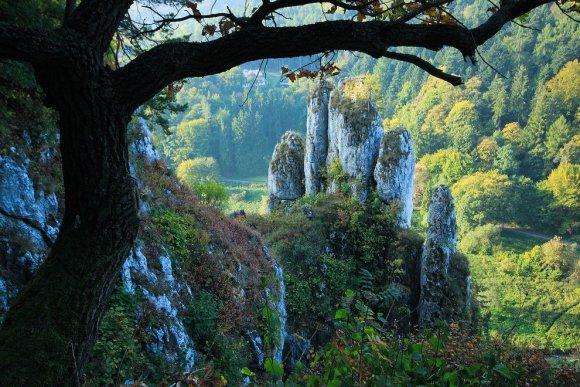 Polandmfa nuotr./Oicuvo nacionalinis parkas