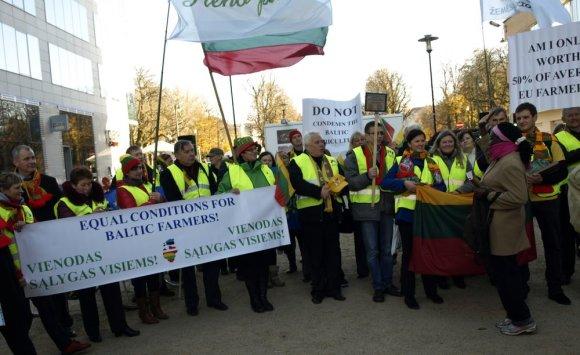 Dalios Plikūnės nuotr./Baltijos šalių ūkininkų protestas Briuselyje