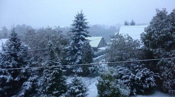 """Nuotr. iš """"Twitter""""/Pirmasis sniegas Lenkijoje"""