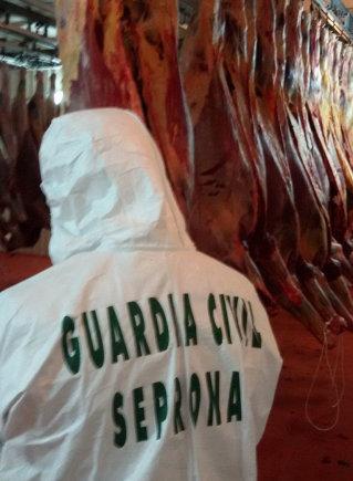 Europolo nuotr./Operacija Ispanijoje