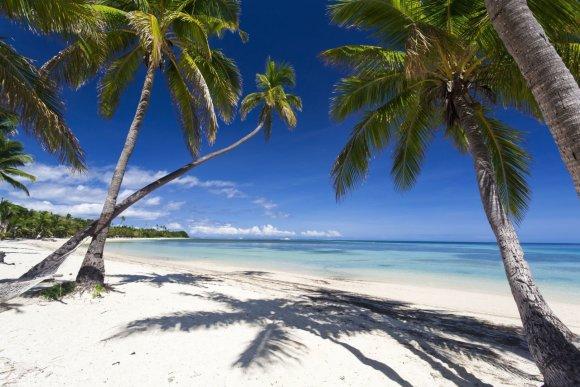 123rf.com nuotr./Fidžis