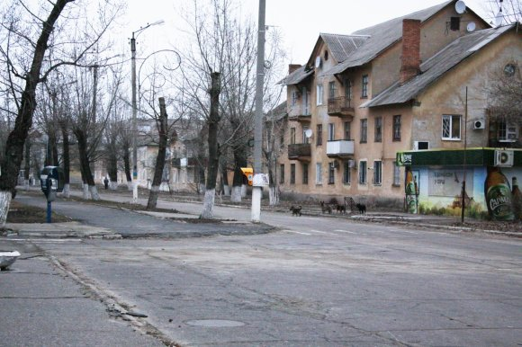 D.Pancerovo nuotr./Ščestja miestas