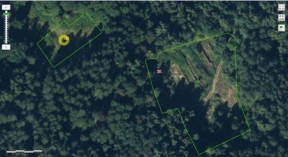 Regia.lt nuotr./VTPSI nustatė, kad statinių registravimui Aukštagirio g. 31 (sklypas dešinėje) panaudoti gretimo sklypo duomenys