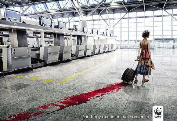 Įspūdingiausios pasaulio socialinės reklamos