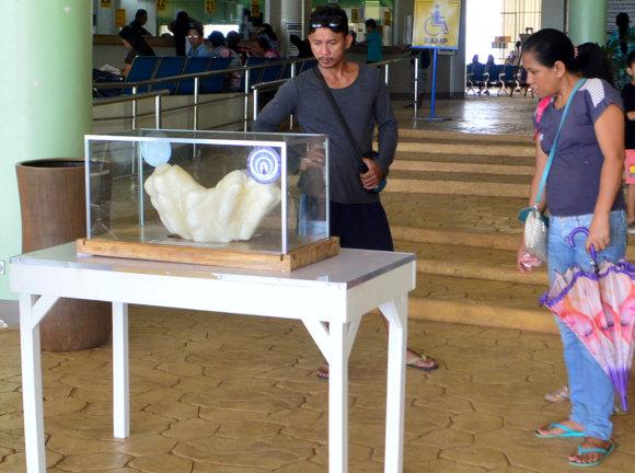"""""""Scanpix""""/AP nuotr./Filipinuose rastas didžiulis perlas"""
