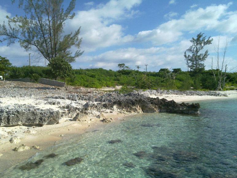 Kaimanų salos