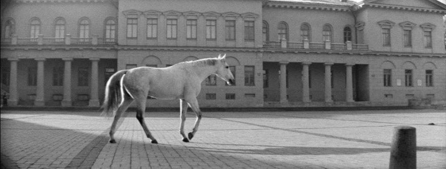 """""""Laikas eina per miestą"""" (rež. A. Grikevičius, 1966)"""