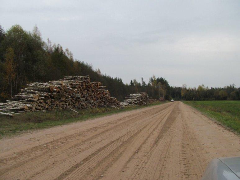 Sandėliuojama mediena