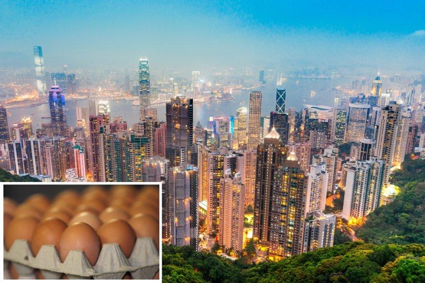 Lietuviški kiaušiniai gali atsidurti ir Honkonge