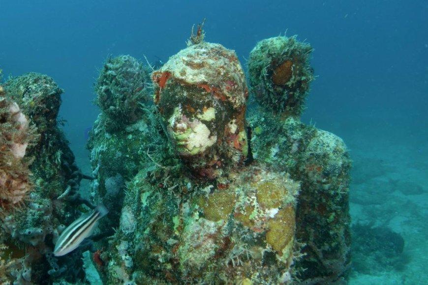 Povandeninis muziejus