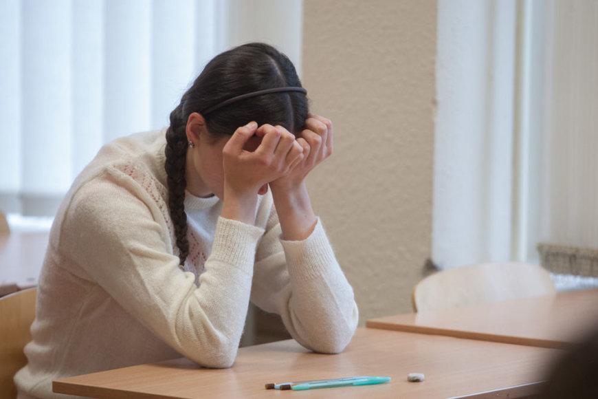 Vilniaus Karoliniškių gimnazijoje moksleiviai ruošiasi anglų kalbos valstybiniam egzaminui