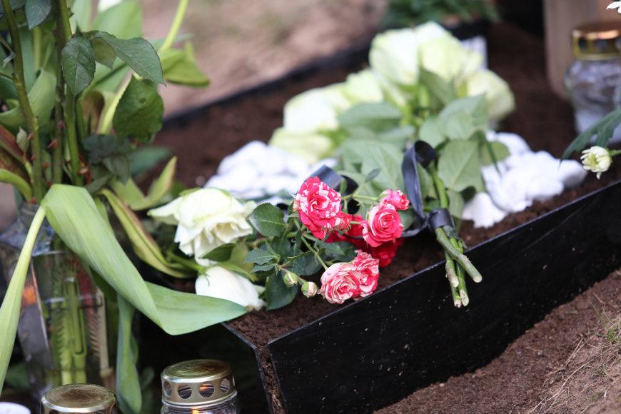 Vytauto Šapranausko kapas 2014-ųjų balandžio 18 dieną