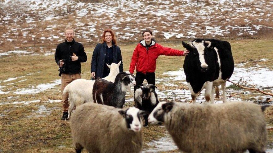 Viktorija ir Edvardas įkūrė namus neprižiūrimiems ar nuo skerdyklų išgelbėtiems gyvuliams