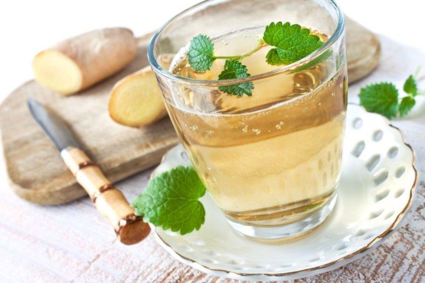 Imbierinis limonadas su agurkais