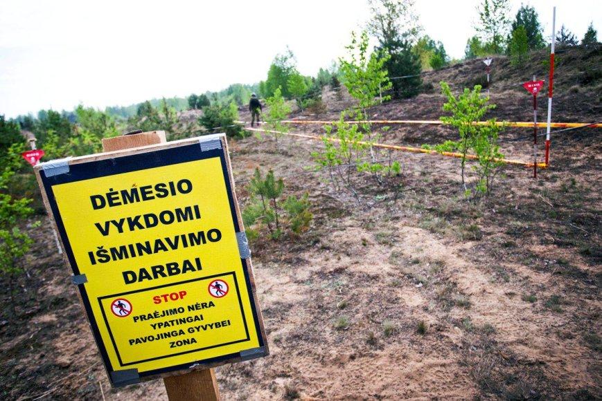 Kariuomenės išminuotojai Klaipėdos rajone rado apie 2 tūkst. artilerijos sviedinių