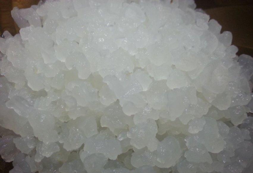Indiškas jūros ryžis