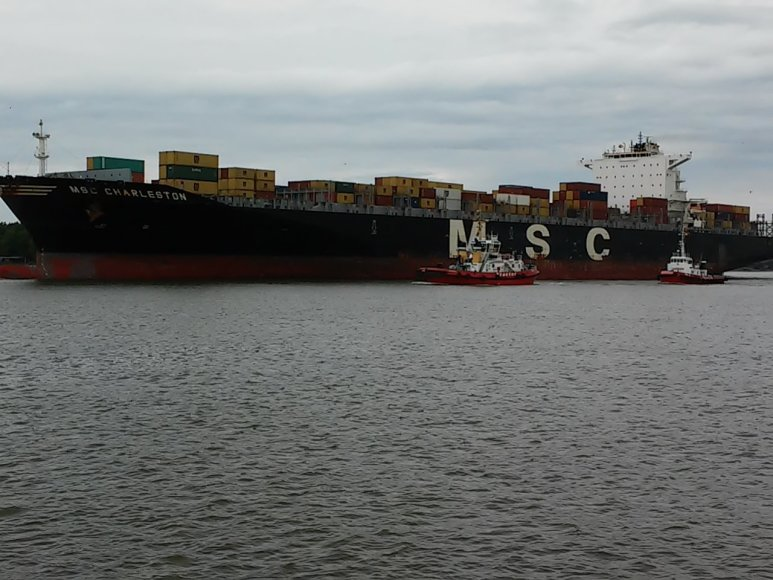"Konteinervežis ""MSC Charleston"""