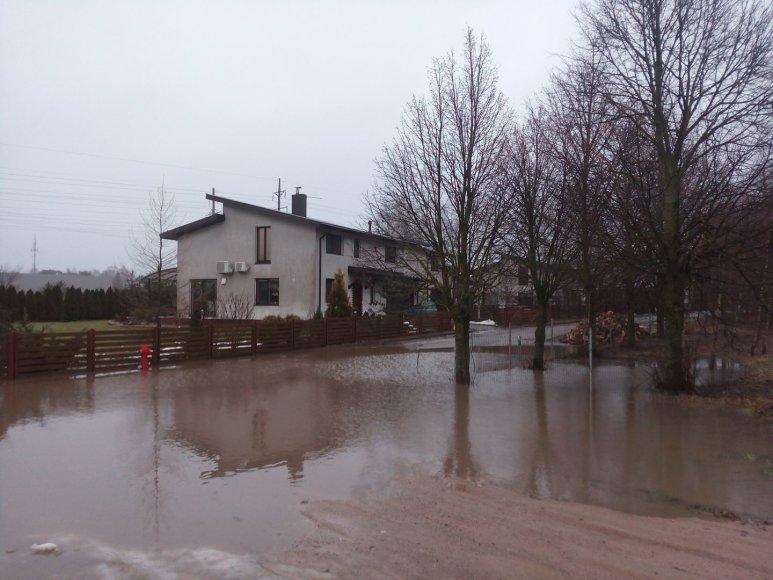 Potvynis Zujūnuose, Žaliojoje gatvėje