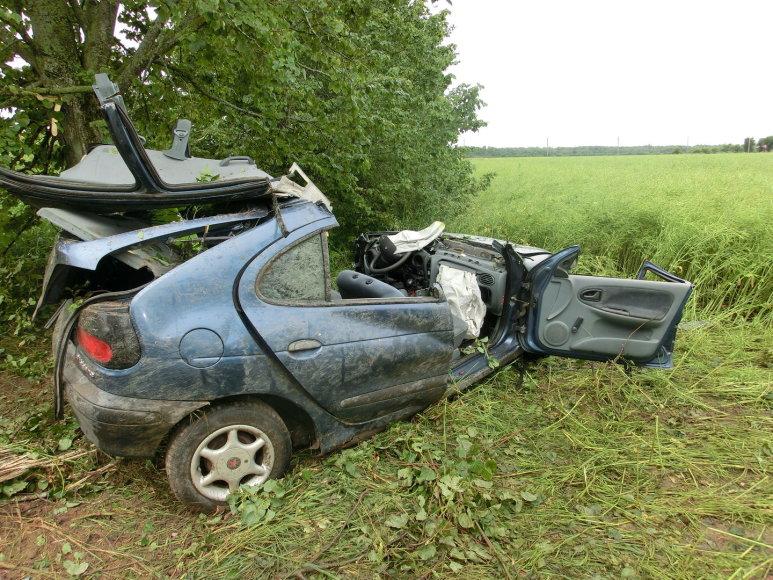 """Kėdainių rajone į medį trenkėsi """"Renault"""""""