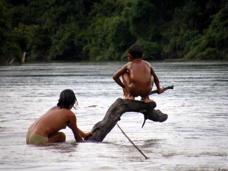 Ekspedicija Venesueloje – pas atokią janomamų gentį