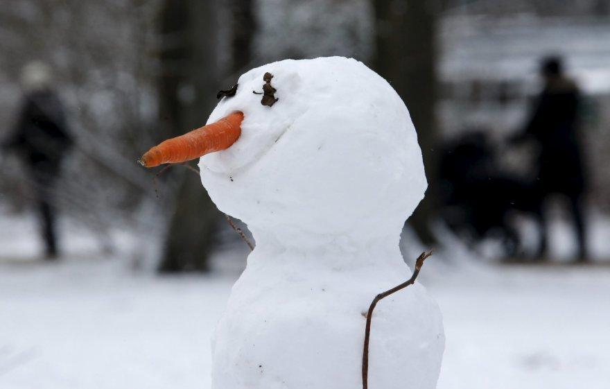 Balta žiema pasaulyje