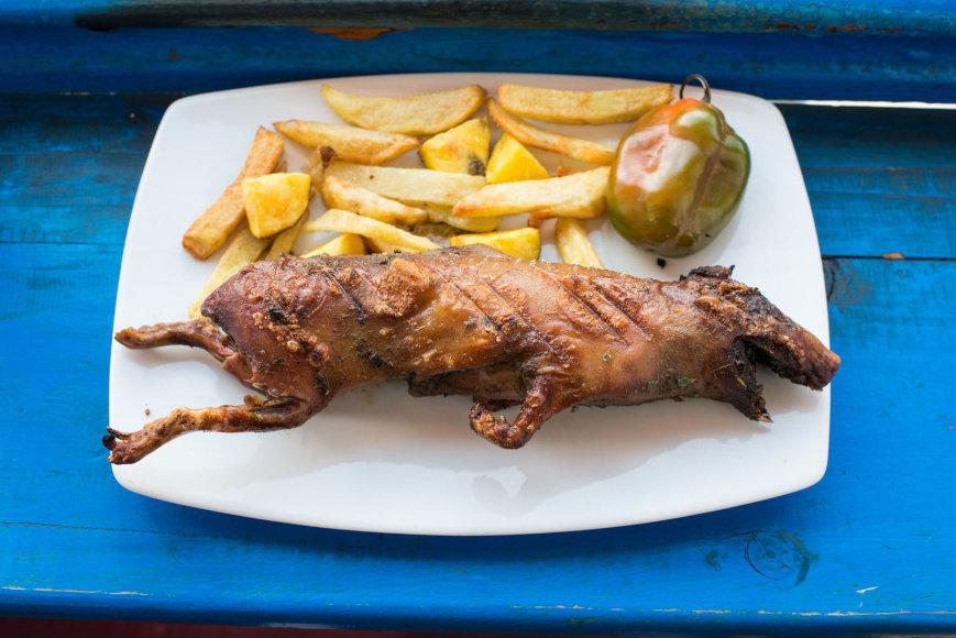 Tradicinis Peru patiekalas – jūrų kiaulytė