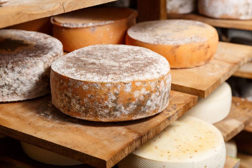 Sardinijos sūris