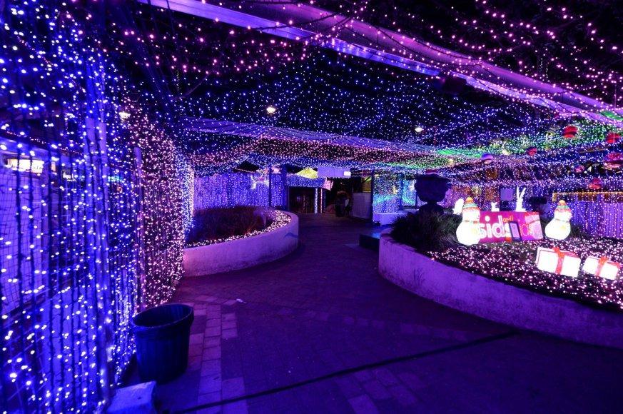 Australijoje - didžiausia kalėdinių lempučių instaliacija