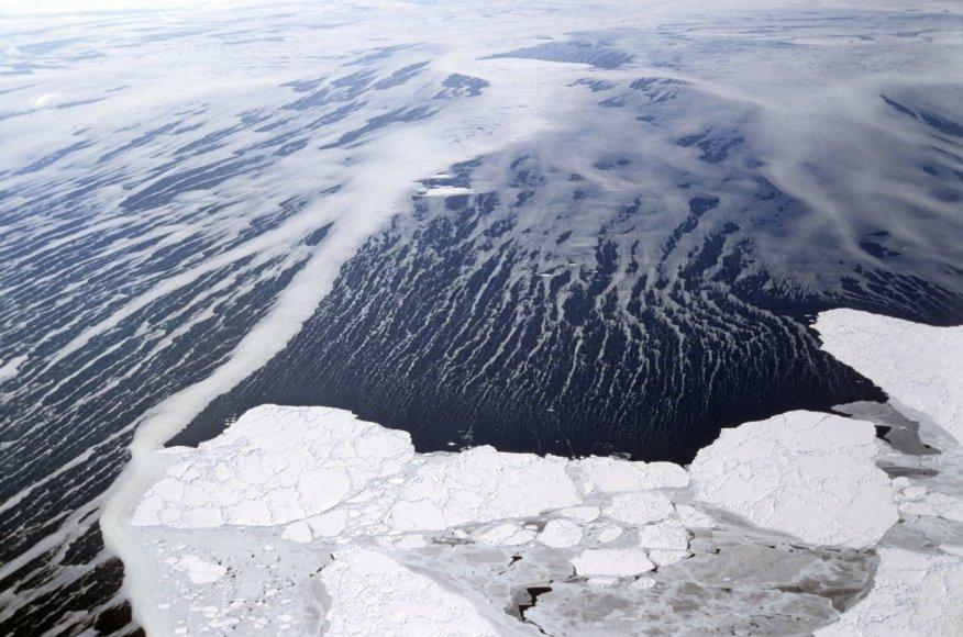Beringo jūra
