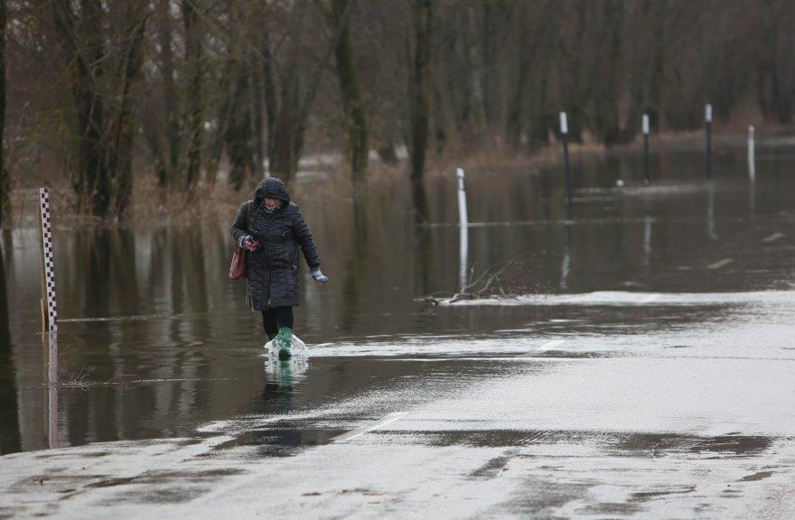 Potvynis pamaryje 2015 m. sausio 15 d.